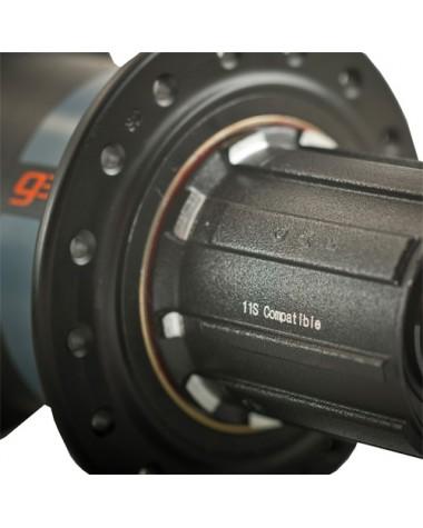 Maza Powertap G3 Ruta, potenciómetro
